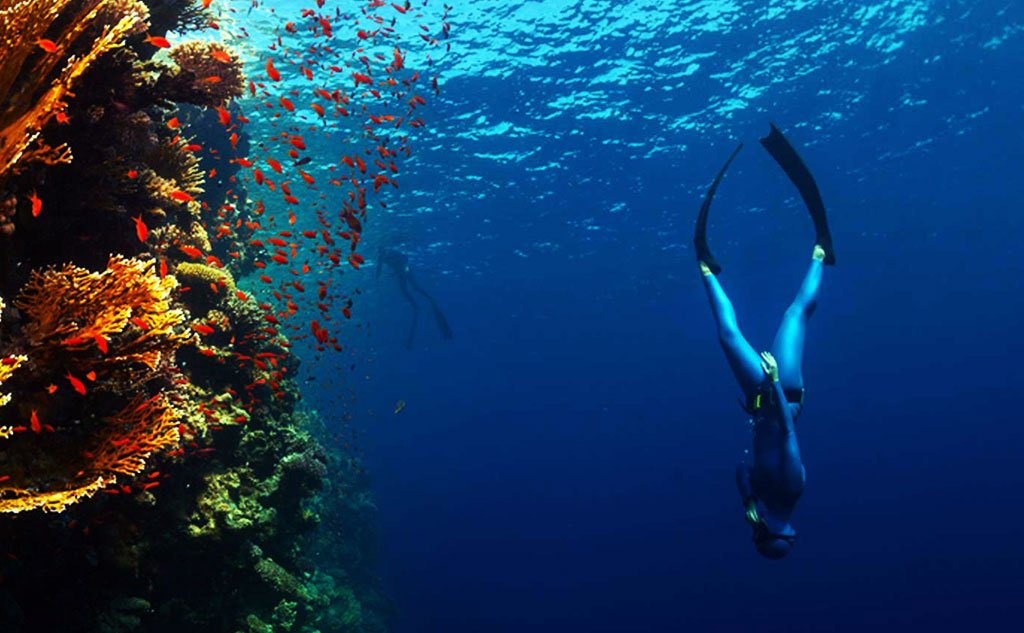 freediving in Raja Ampat