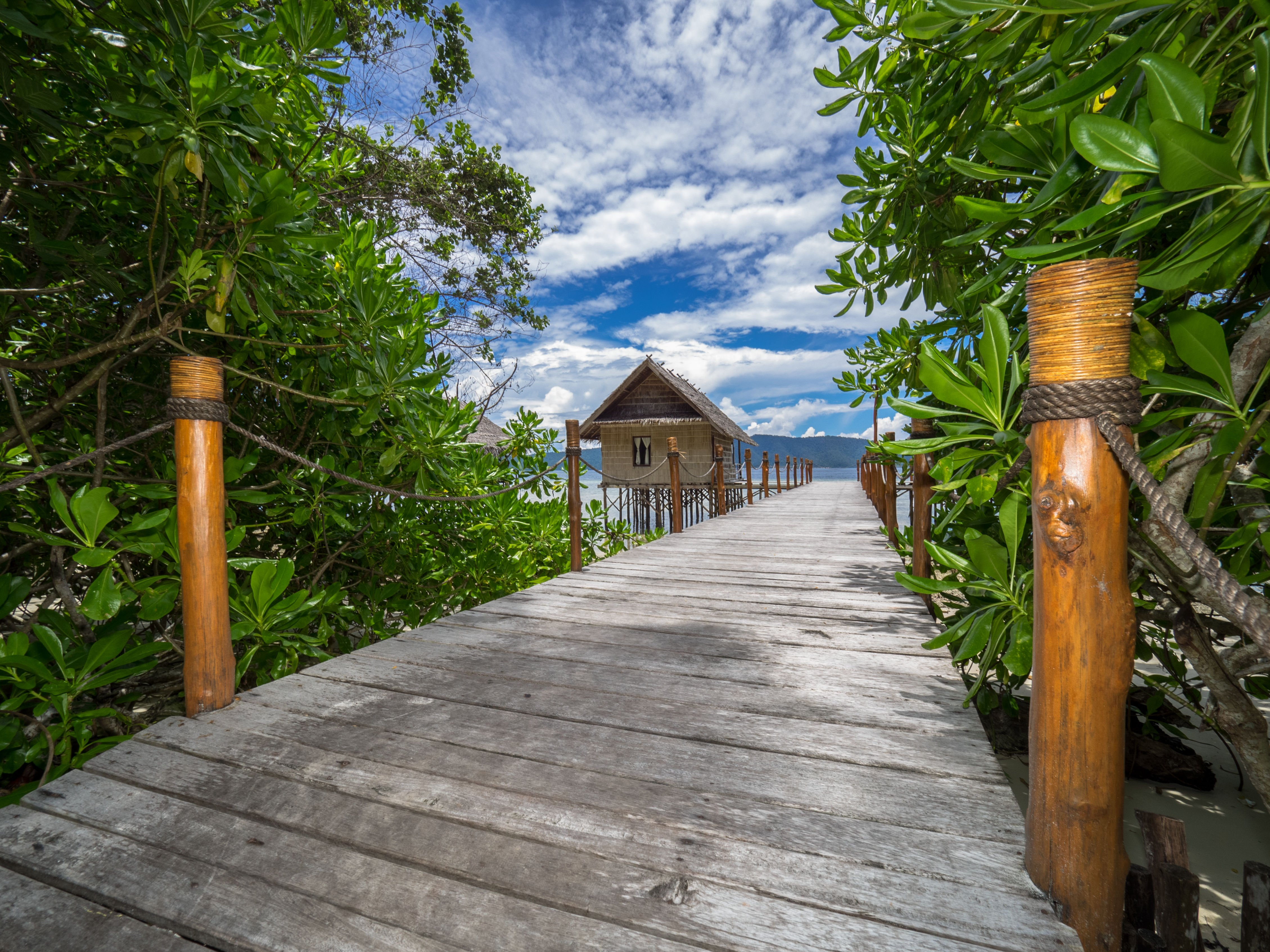 jetty leading to the bungalows