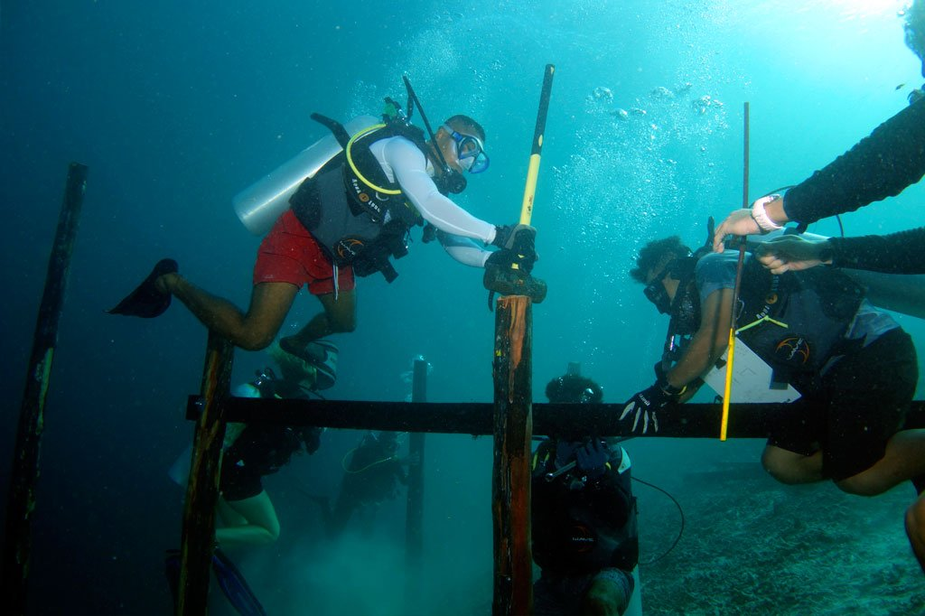 Reef Restoration Project