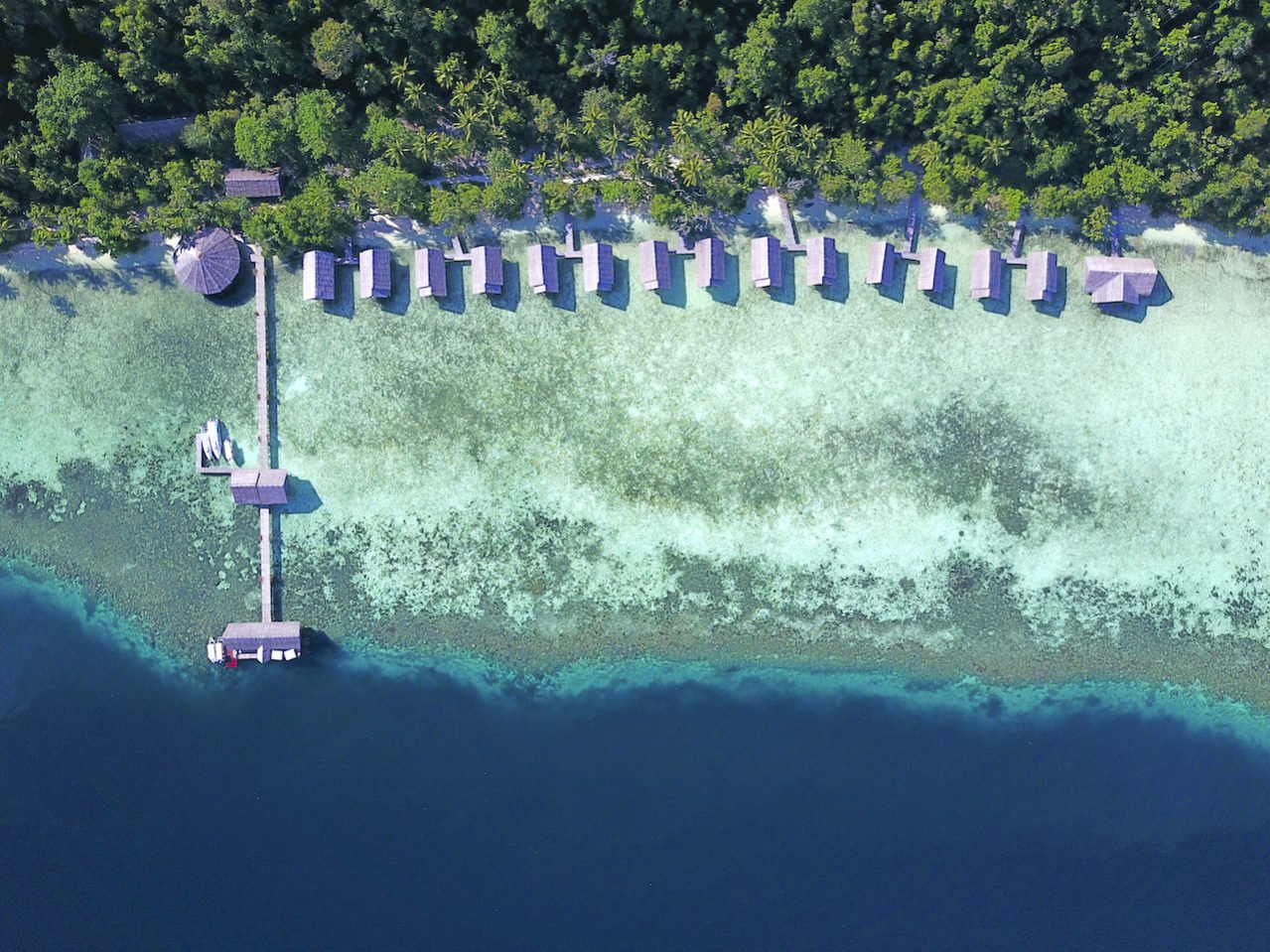 Aerial view of Papua Explorers resort