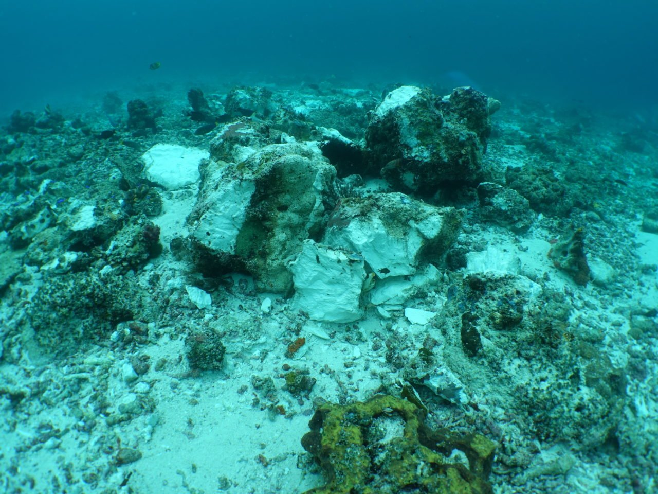 Reef damage at Raja Ampat Crossover reef