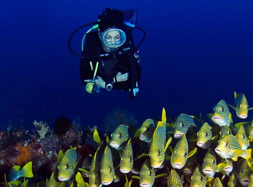 raja-ampat-diving-conservation