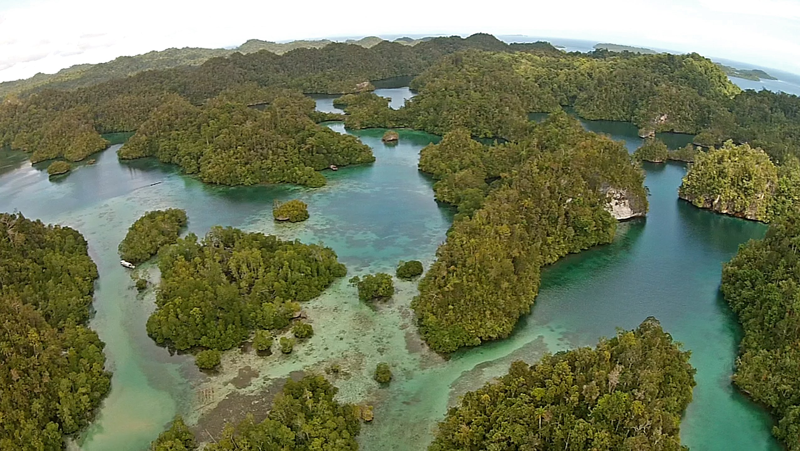 4 reasons you should visit Raja Ampat in 2019