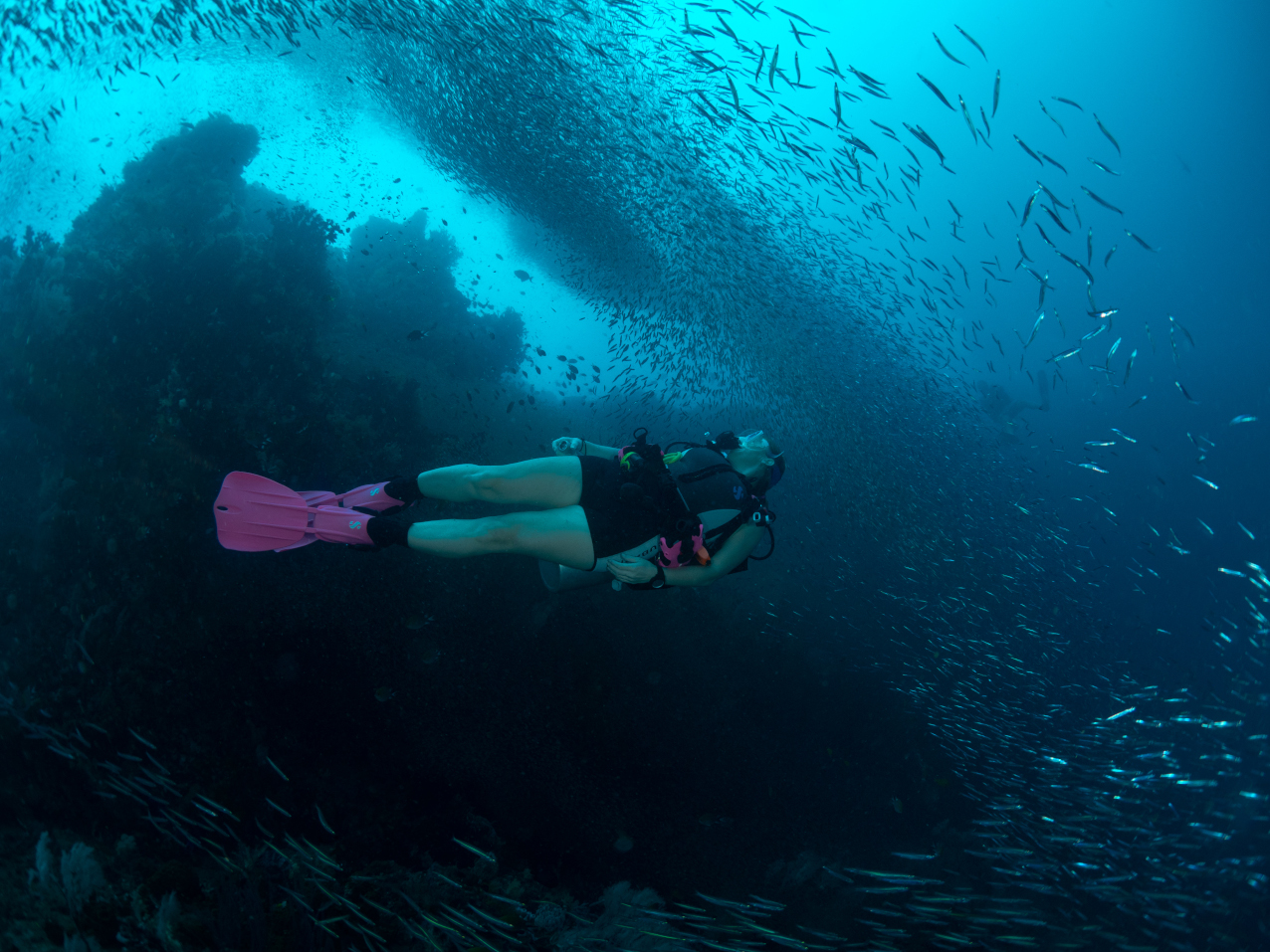 a scuba diver swimming underwater between many small fish