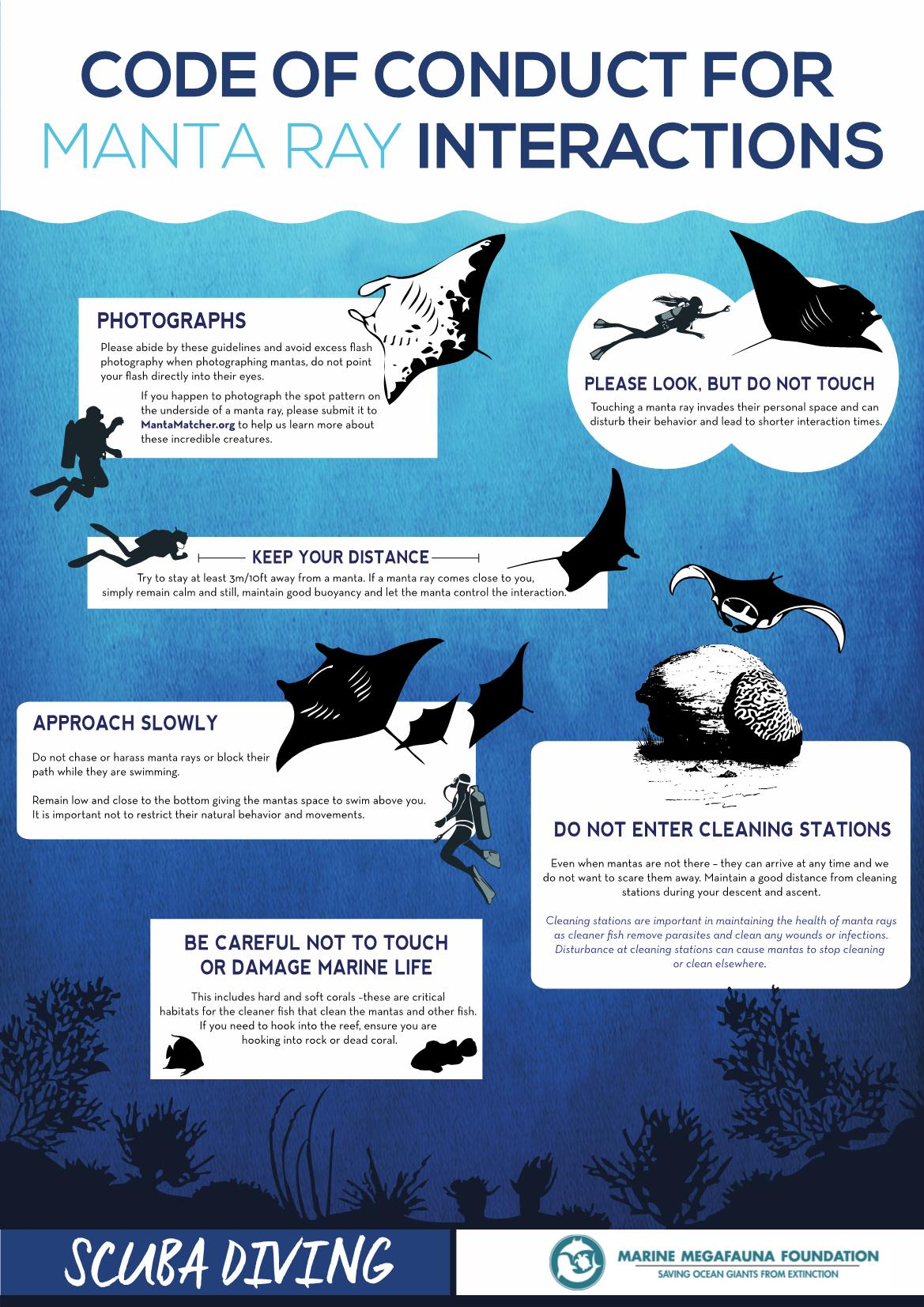 graphic showing the rules for interaction with manta rays in raja ampat