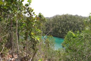climbing up to the viewpoint on the wayag islands