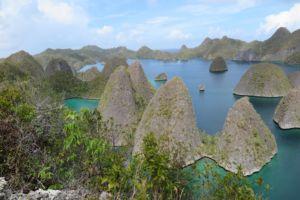 ocean and island panorama in raja ampat