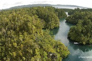 Image of diving site The Passage at Raja Ampat