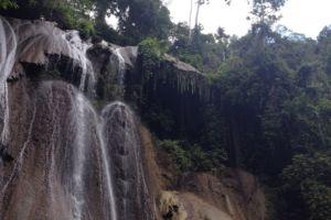 the jungle above the waterfall on Batanta island in Raja Ampat