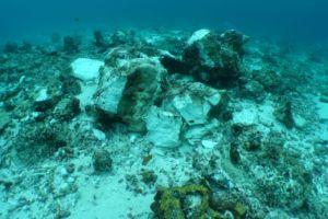 Reef damage at Raja Ampat Crossover reef
