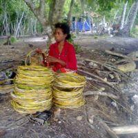 Papuan lady preparing natural construction material