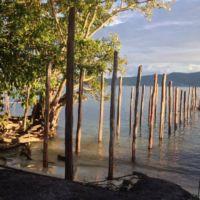 Wooden Poles Jetty Foundation Papua Explorers